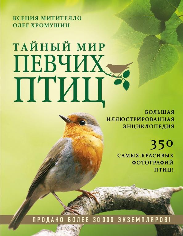 справочник в картинках птицы лица пока